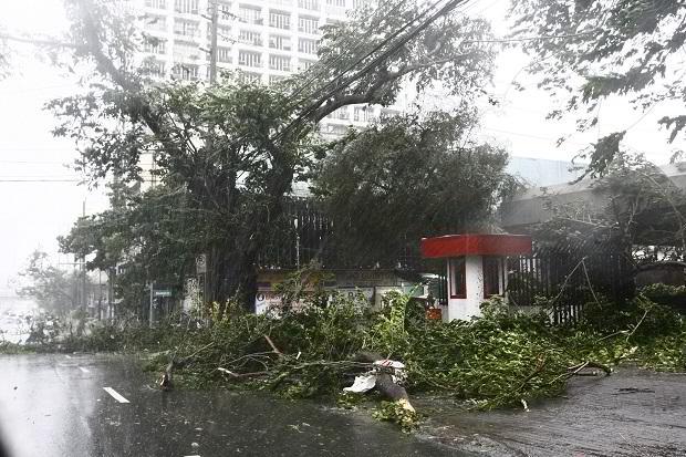 typhoon-glenda-3